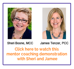 mentor coaching demonstration link